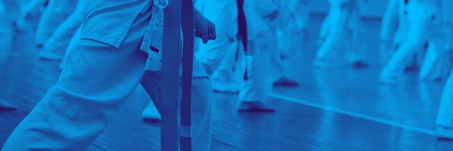 Karate-Newsletter