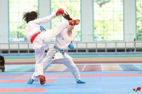 Karate 1 Premier League German Open 8.-10.09.2017 Halle/Saale Tag 3, Sonntag, 10.10.2017
